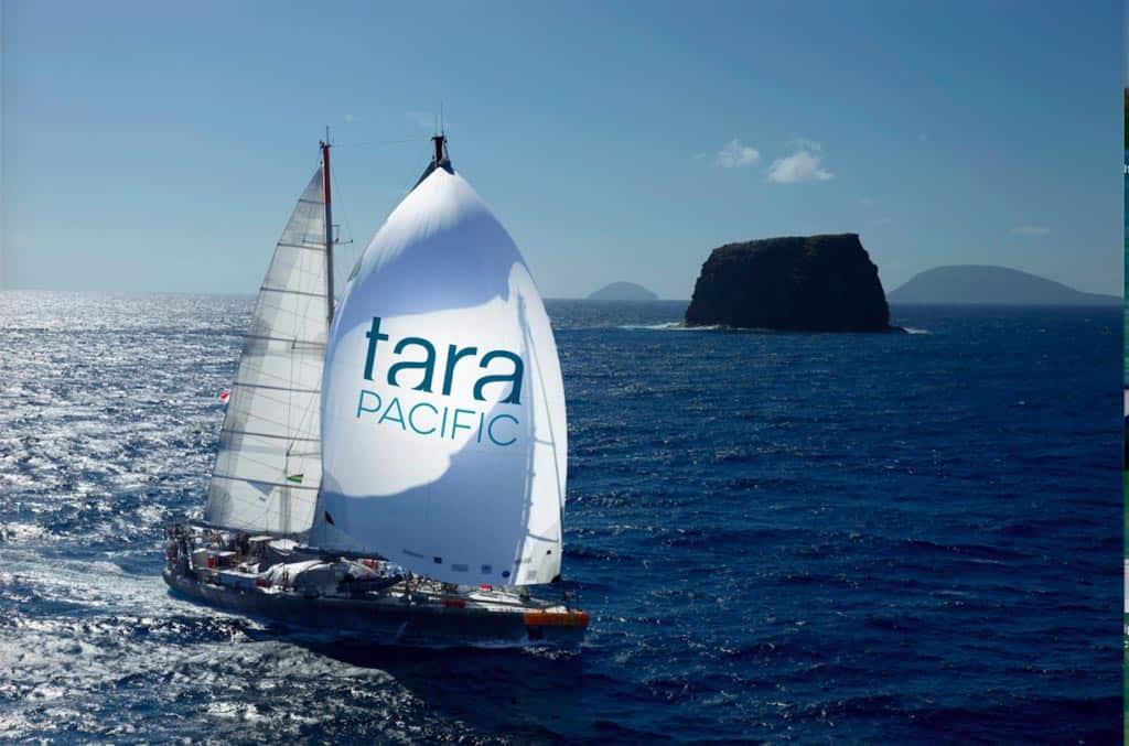 partners_tara-expedition